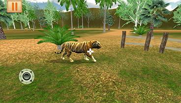 Amazon rainforest VR