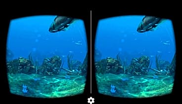 Sea World VR 2